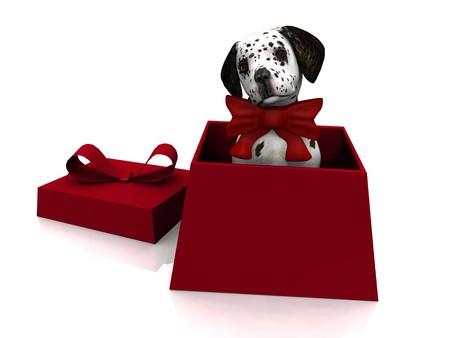 dalmatian: A cute dalmatian puppy in a gift box. Stock Photo