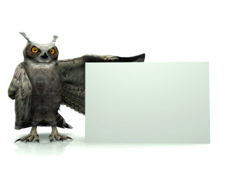 horned: A horned owl holding a blank sign. Stock Photo