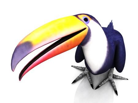 A smiling toucan bird on white background.