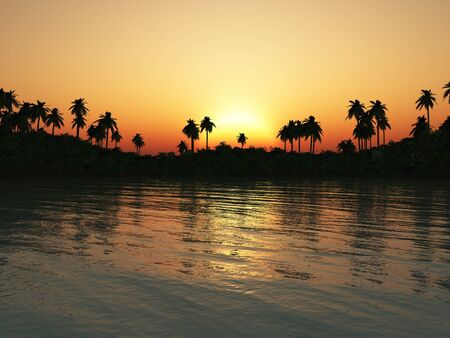 A beautiful tropical lagoon at sunset. Water in the foreground and palmtrees in the background. photo