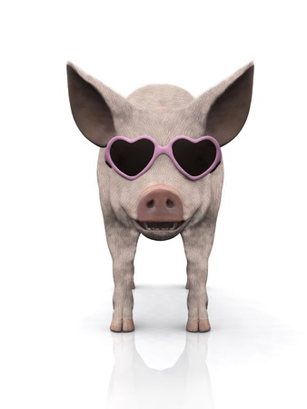 3D glasses: A cool smiling piglet wearing pink heart shaped sunglasses. White background.
