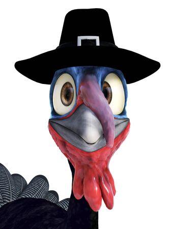 pavo: Primer plano de una tonta pavo historieta que parece divertido que lleva un sombrero de peregrino. Fondo blanco.