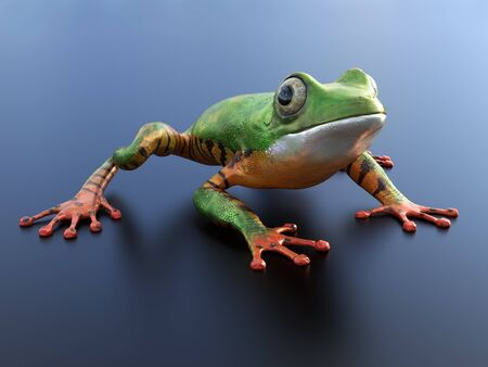 Realistic 3D rendering of a green and orange colored tree frog sitting on a reflective surface. Stock Photo