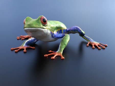 Realistic 3D rendering of a green, blue and orange colored red-eyed tree frog, Agalychnis callidryas, sitting on a reflective surface. Stok Fotoğraf