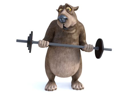 3D rendering of a charming cartoon bear trying to lift a barbell. He looks a bit strained. White background. Stock Photo