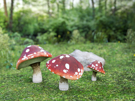 3D rendering of three fly agaric mushroom in a green lush forest. Stock Photo