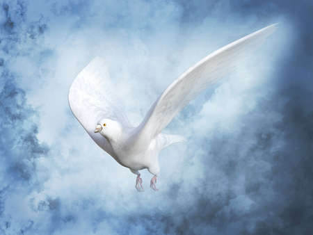 3D rendering of a white peace dove or pigeon flying in heaven with clouds around it. Stock Photo