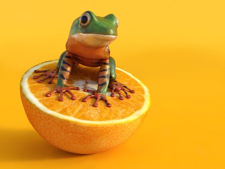 Realistic 3D rendering of a green and orange colored tigerleg monkey tree frog, Phyllomedusa tomopterna, sitting on an orange fruit. Orange background. Stock Photo