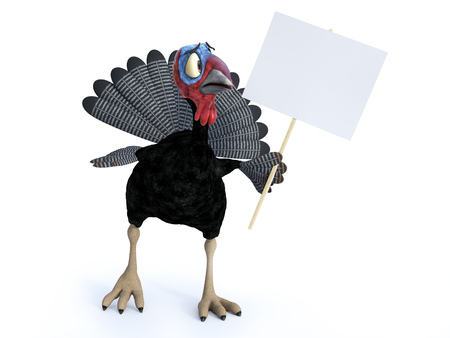 3D rendering of a silly cartoon turkey looking at a blank sign he is holding. He looks a bit nervous. White background.