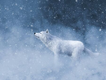 3D rendering of a majestic white wolf surrounded by magical snow. Standard-Bild