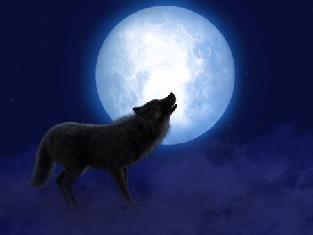 3D rendering of a black wolf or werewolf with glowing red eyes howling at the big moon. Stars in the night sky, fog on the ground.