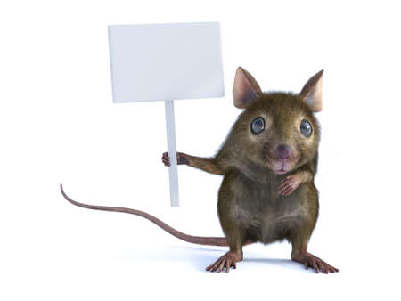 3D rendering of a cute mouse standing up on two legs and holding a blank sign in its hand or paw. White background. Stock Photo