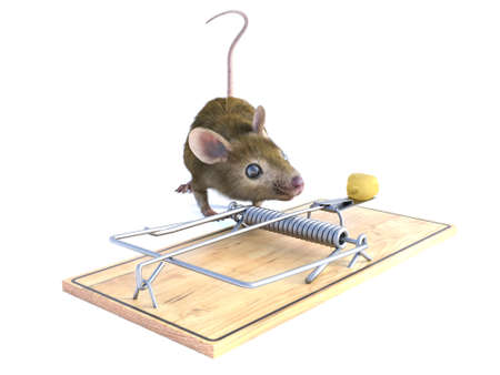 3D rendering of a cute mouse looking at a piece of cheese in a mouse trap. White background.