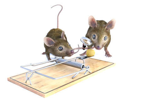 3D rendering of two cute mice looking at a piece of cheese in a mouse trap. One of them is holding a magnifying glass. White background.