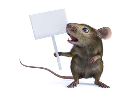 3D rendering of a cute mouse standing up on two legs and holding a blank sign in its hand or paw and looking really shocked. White background.