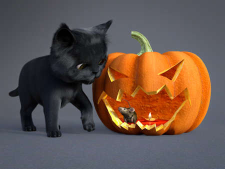 3D rendering of a cute black cat and a mouse sitting inside an orange colored Halloween carved pumpkin. Stock Photo