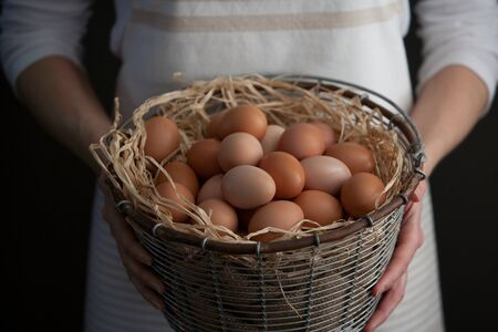Woman Holding Wire Basket of Fresh Farm Chicken Eggs Stock Photo