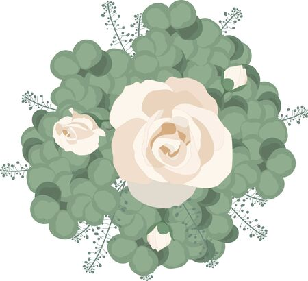 This hand drawn vector pattern features the trendy silver dollar eucalyptus leaves as well as beautiful white roses. The repeat pattern is great for gift wrap and feminine styled stationary and packaging.