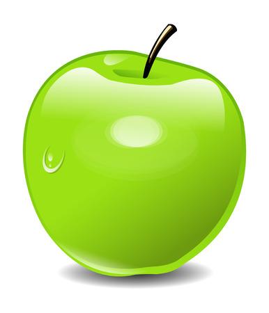 manzana verde: Ilustración Green Apple Vectores