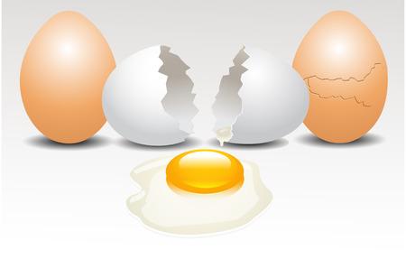 uovo rotto: uovo rotto