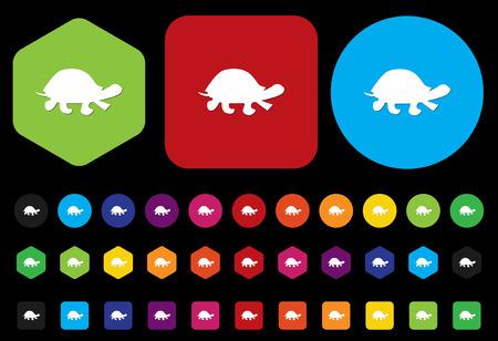 land shell: turtle button Illustration