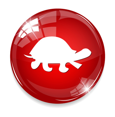 turtle button Illustration