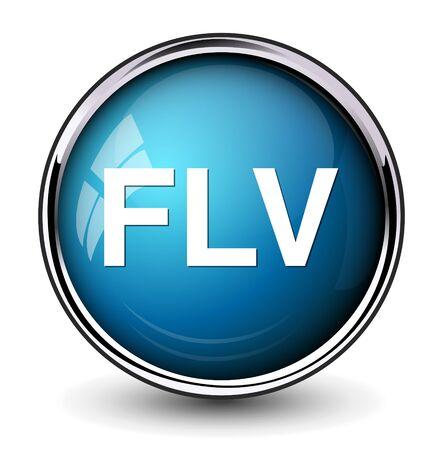computer animation: Flv Button