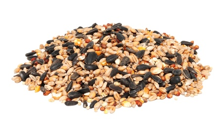 Pile of bird seed including sunflower seeds, wheat and maize, isolated on a white background 版權商用圖片