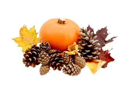 Autumnal leaves and fir cones with a ripe pumpkin isolated on a white background photo