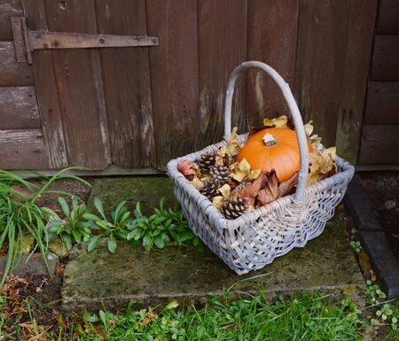 doorstep: Basket with autumnal ripe pumpkin, dry leaves and fir cones on a rustic stone doorstep Stock Photo