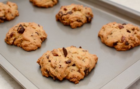 cookie sheet: Freshly baked chocolate chunk and pecan nut cookies on a cookie sheet