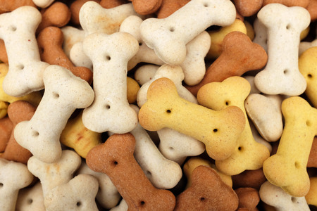 Heap of dried dog food biscuits as an abstract background texture photo