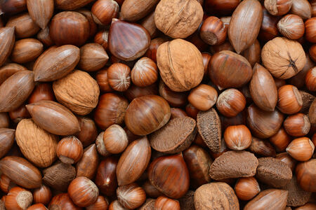 mixed nuts: Mixed nuts - chestnuts, pecans, walnuts, brazils and hazelnuts - as an abstract background texture