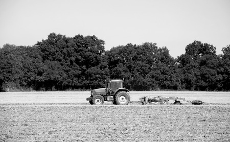 tree disc: Tractor and disc harrow breaking up the soil after harvest in a farm field - Kent, England - monochrome processing