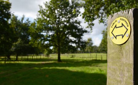 fencepost: Public footpath sign points into a green field with tall trees casting shadows Stock Photo