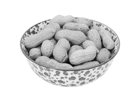 monkey nuts: Monkey nuts in a porcelain bowl with a floral design, isolated on a white background - monochrome processing