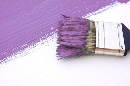 bristles: Close-up of paintbrush with paint-covered bristles painting a white board purple
