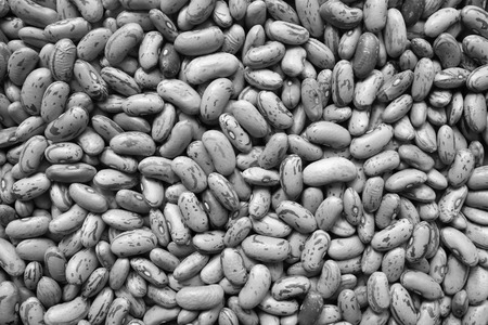 borlotti beans: Borlotti beans, or cranberry beans as an abstract background texture - monochrome processing