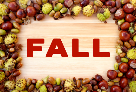 horse chestnuts: FALL written on wooden background with beechnuts, horse chestnuts and acorns frame