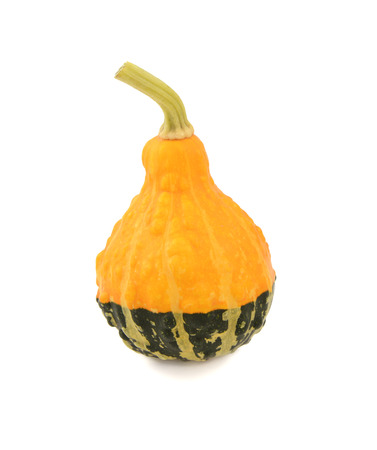 bumpy: Yellow and green ornamental pumpkin with bumpy texture, isolated on a white background