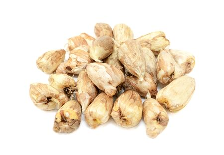 papery: Pile of freesia bulbs with papery skins, isolated on white background