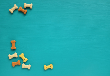 Bone-shaped dog biscuits scattered as left border on a turquoise painted wooden background