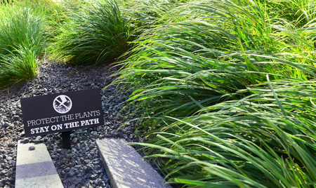 PROTECT THE PLANTS sign in a flower bed among green grasses on the High Line in New York City Stock Photo