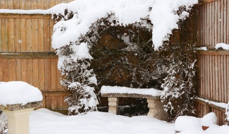 Stone bench covered in snow, surrounded by snowy cotoneaster hedge in a rural garden Banco de Imagens