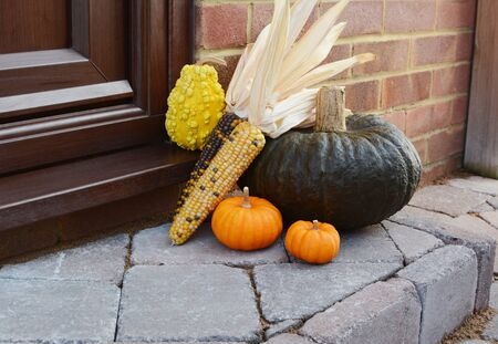 Large green pumpkin with Indian corn and ornamental gourds as a seasonal doorstep decoration with copy space