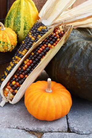 Mini pumpkin with ornamental corn and gourds as seasonal decorations on a stone step