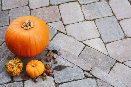 Orange pumpkin and gourds with hazelnuts and autumn leaves as seasonal decoration on stone step with copy space