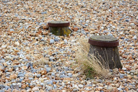 Tops of two groyne sea defences visible on a shingle beach, with dry sea grasses growing among the pebbles Stock fotó