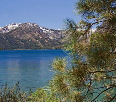 south lake tahoe: Landscape with blue Fallen Leaf Lake, pine and mountain