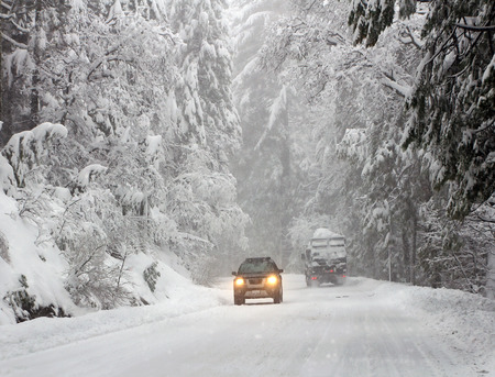 heavy snow: Road with cars in winter forest. Heavy snow. Stock Photo